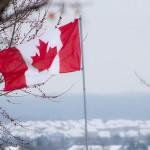 マジで怖い!プロペシア(フィナステリド)の副作用についてのカナダの報道記事